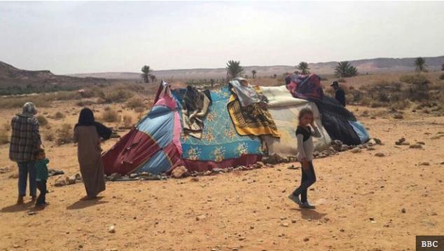 الزكاة تنتظر السماح لها بتقديم المساعدة للعائلات السورية العالقة على الحدود الجزائرية المغربية