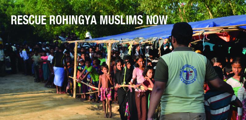 Rohingya bammer