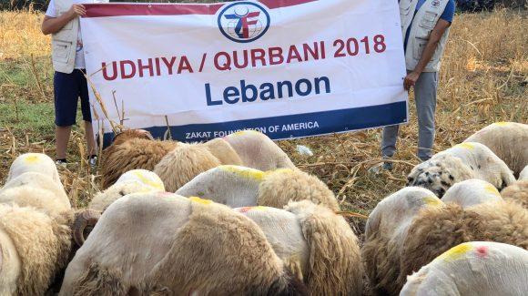 Lebanon: Udhiya/Qurbani 2018