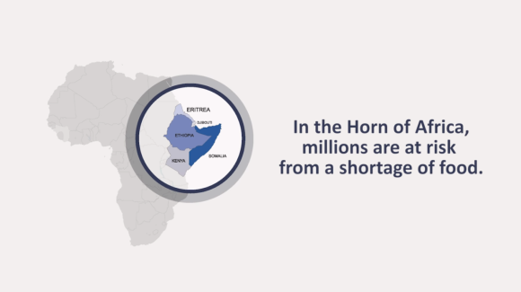 The Hunger Crisis in the Horn of Africa