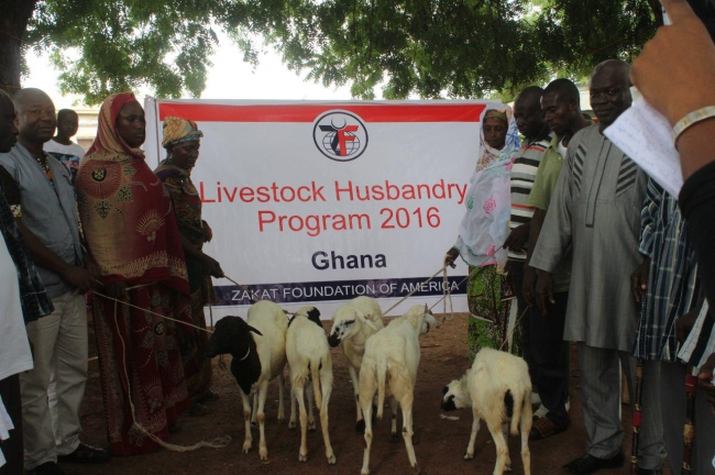 Graphic Online: Zakat Foundation Launches Livestock Husbandry Project