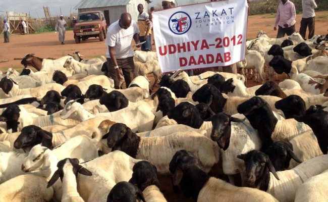 2012 Udhiya-Qurbani