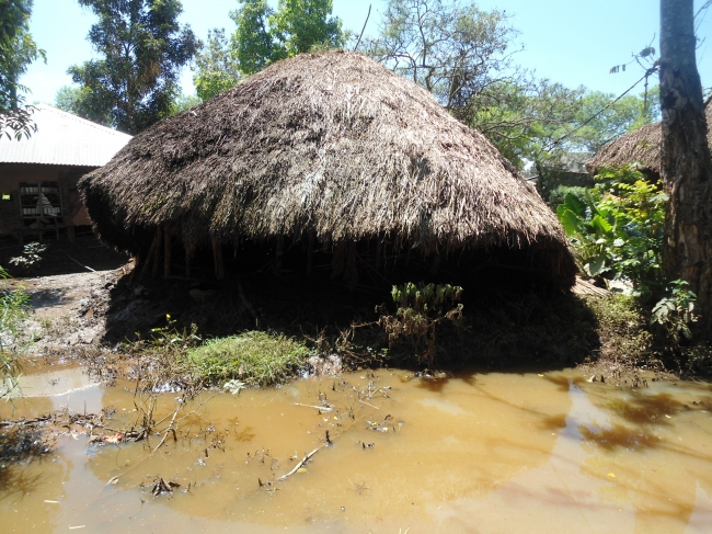 Fighting the Threat of Malaria in Uganda